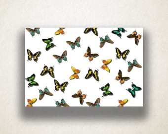 Realistic Butterfly Pattern Canvas Art Print, Butterfly Wall Art, Insect Canvas Print, Canvas Art, Canvas Print, Home Art, Wall Art