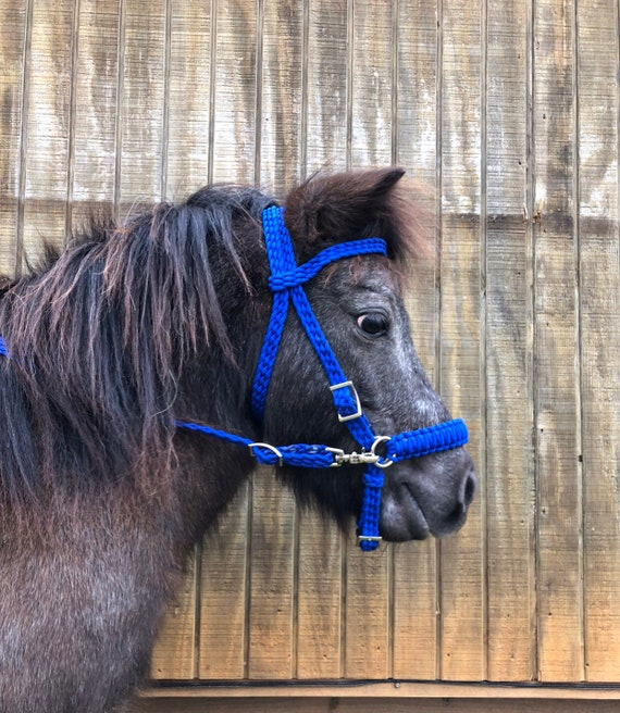 pony bitless bridle turquoise bitless miniature horse pony side pull hackamore bridle pony bosal pony bridle miniature horse bridle