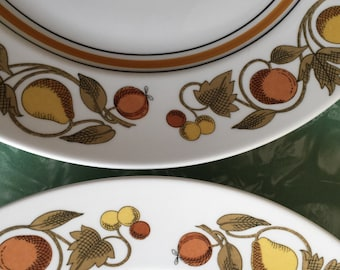 4 Franciscan Pickwick Dinner Plates