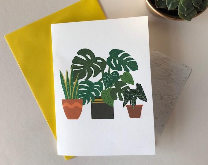 Printed seed paper plant card