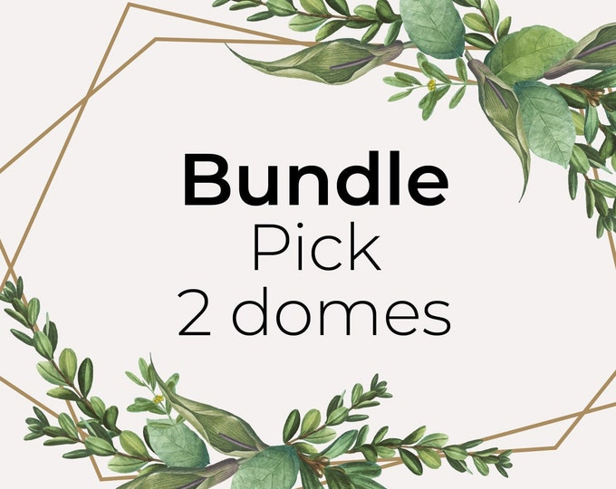Bundle pick 2 domes, miniature paper art