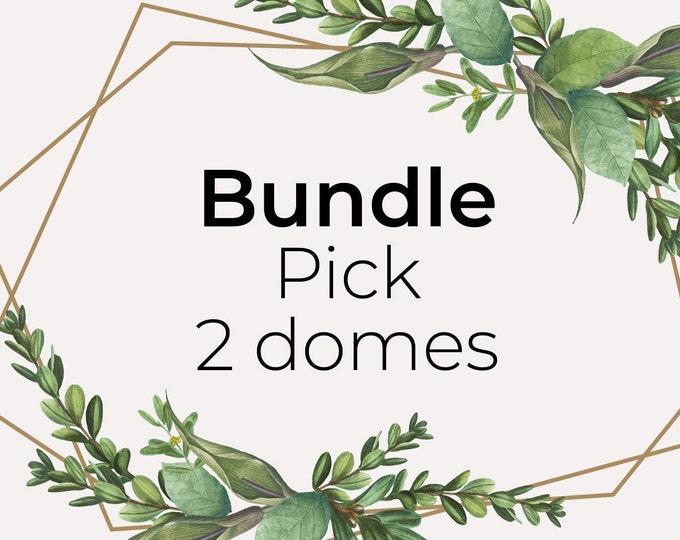 Bundle pick 2 domes, miniature paper art
