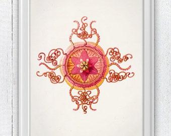 Jellyfish 09 - Wall decor poster  sea life print - Haeckel sea life illustration SAS122