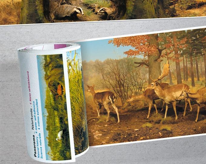 Wall Wallpaper/Braid Natural History