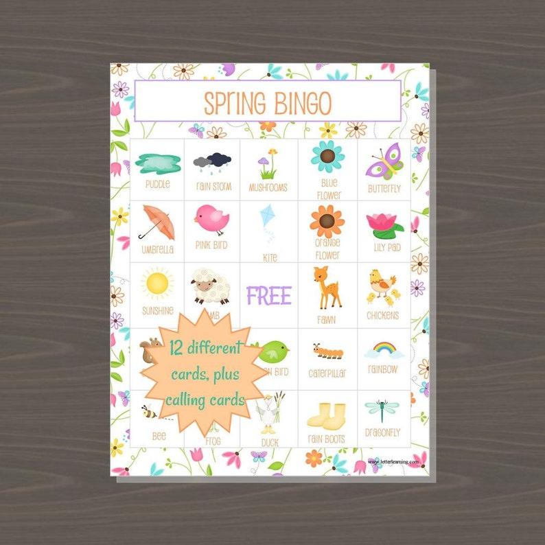 Spring Bingo Game Printable Spring Bingo Board Game for Kids image 1