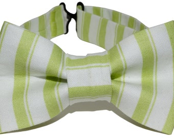 Bow Tie - Green and White Striped Bowtie