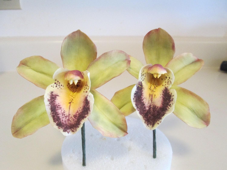 handmade Orchid cymbidium cattleya gumpaste sugar flowers edible cake  topper green pink red cold porcelain clay