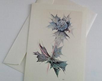 Sea Holly Greetings Card