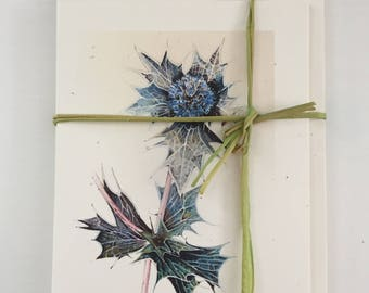 Sea Holly notelets-set of five matching