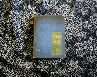 The Last of the Mohicans by James Fenimore Cooper.  1927 Vintage Hardcover Novel with Illustrations. Illustrated Last Of The Mohicans Book