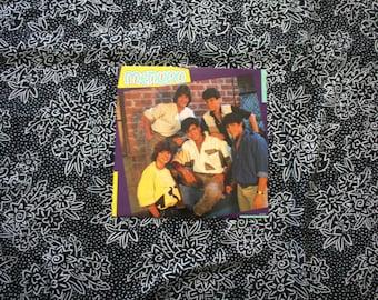 Menudo - Self Titled Debut Vintage Vinyl LP Record Album -  1985 Original RCA Records Release. Ricky Martin Latin Boy Band