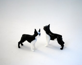 e31-10 Boston Terrier