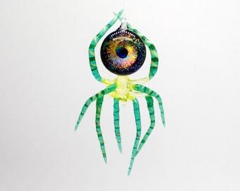 Spiders & Arachnids