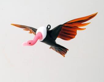 e36-002 Turkey Vulture