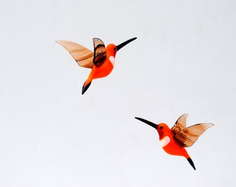 36-255 Rufous Hummingbird