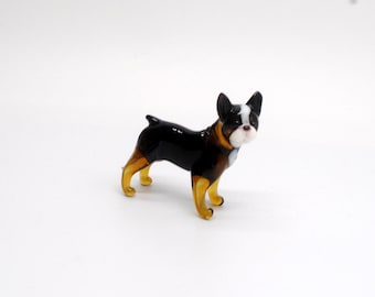 e31-10 Boston Terrier