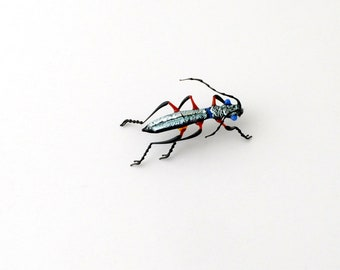 30-12 Phillipinno Tiger Beetle