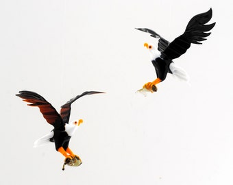 36-374 Bald Eagle with captured Fish (1 piece for price shown)