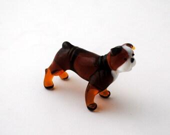 e31-10 American Bulldog