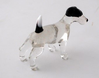e31-10 Jack Russell