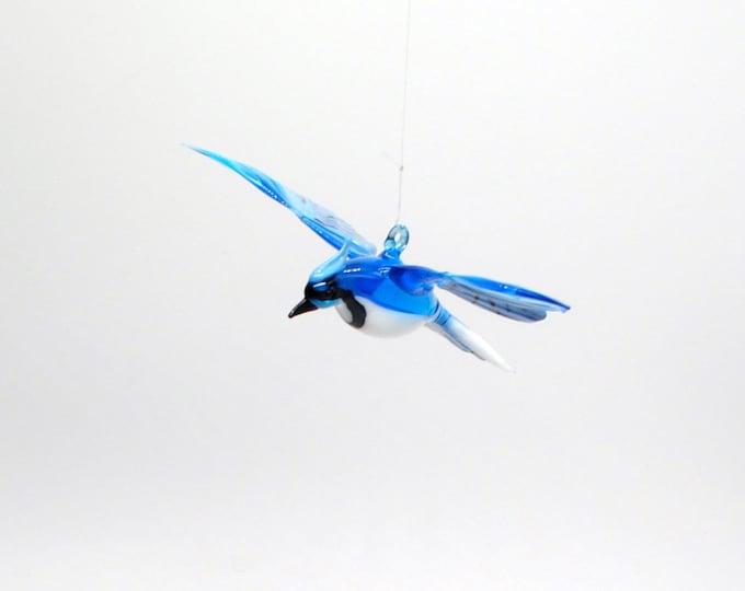 Large Blue Jay