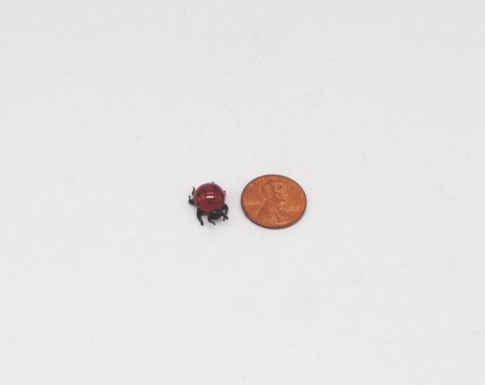 e30-00 Miniature Ladybug