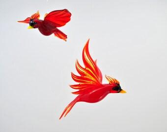 Domestic Birds & Animals