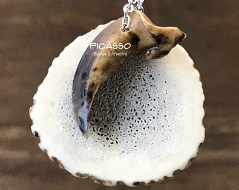 Car Jewelry, Essential Oil Diffuser with Deer Horn, Wolf, Coyote or Bear Claw, Men's Gift, Eco-friendly, Ornament mirror, Father's Day Gift