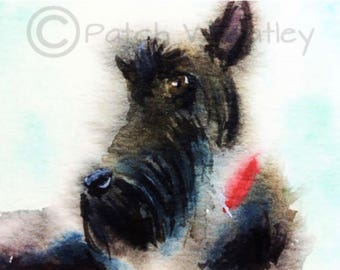 Scottie Dog  Fine Art Print Scottish Terrier #83
