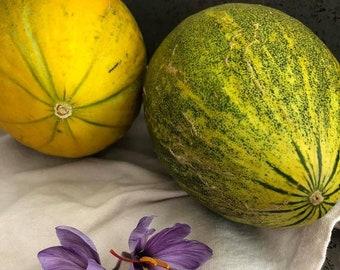 Rare Uzbekistani Organic Melon Seeds   Gardening Seeds   Product of USA   Sweet Uzbek Melon Seeds  