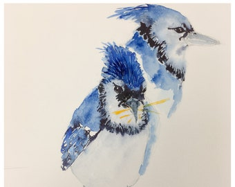 Blue Jay Study - Original Watercolor Painting by Lexi Grenzer