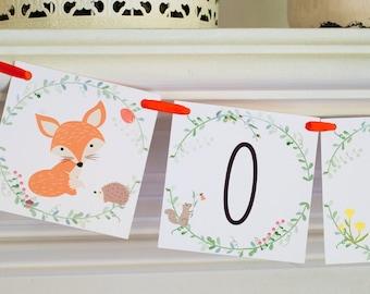 Fox One Banner, Woodland Banner, Woodland Birthday Banner, Fox 1st Birthday Party, Woodland 1st Birthday, Highchair Banner, P022