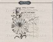 French decor Hummingbird printable graphic Digital download image for iron on fabric transfer burlap decoupage scrapbook pillow tote 721