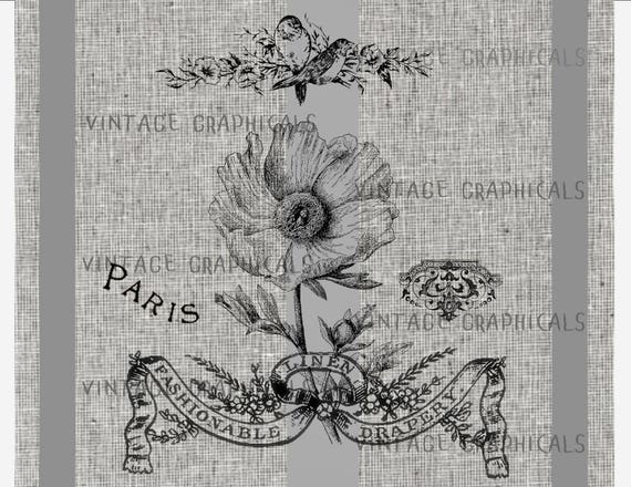 French poppy flower instant graphic digital download image for etsy image 0 mightylinksfo