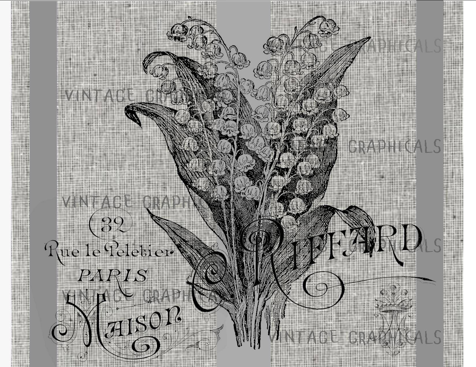 French lily of the valley instant clip art flower digital etsy zoom izmirmasajfo
