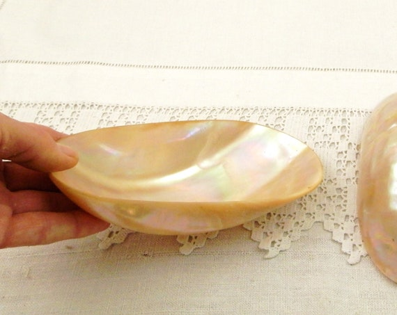 Large Antique French Mother of Pearl Scoop, Vintage Nest of Shell Spoon from France, Retro Apothecary Curio Country Cottage Decor
