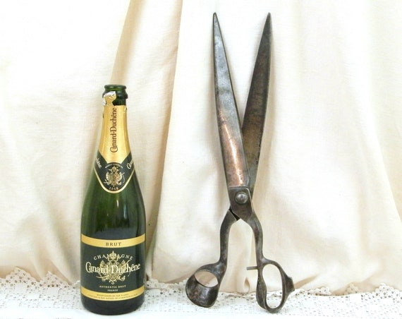 Antique Large Big Industrial Sized Drappers Scissors from Paris France, Huge Enormous French Tailors Cutting Shears, Curios Shop Display