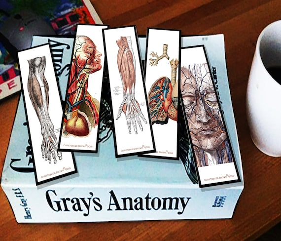 Bookmarks Human Anatomy Grays Anatomy Etsy
