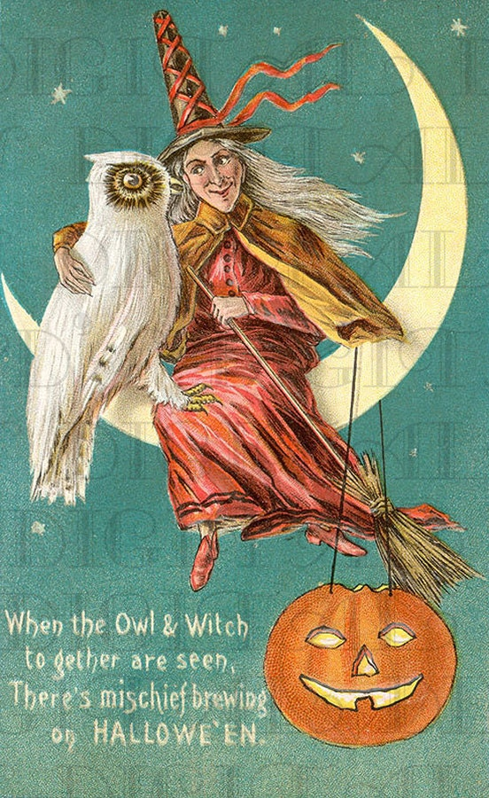 wonderful white owl and witch halloween digital download