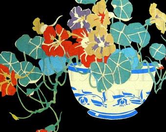 RARE. Luscious Colorful Vase of NASTURTIUMS! Vintage FLOWER Illustration. Vintage Digital Flower Download. Vintage Flowers Printable Image.