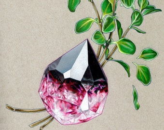 Tourmaline and Marjoram Fine Art Print 7.25 x 10