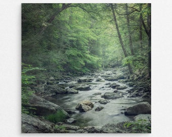 "Green Forest Landscape Wall Art Print | Landscape Photography Print | Woodland Wall Decor | Rustic Wall Art | ""Misty Forest Stream"""
