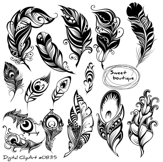 Digital Feathers Feathers Digital Clipart Feather