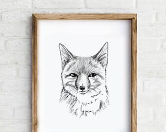 Art Print - Fox - Giclée print of an original illustration