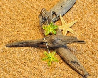 Translucent Lampwork Starfish Earrings