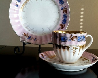 Carl Tielsch Fine Bone China Tea Set/ Hand Painted CT China Set