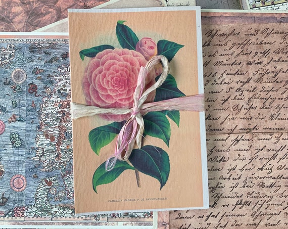 Paperback Writing Journal, Notebook, Camellia, White Pages, Travel Diary, Garden Journal, Fountain Pen Friendly, Handmade, 8.5 x 5.5