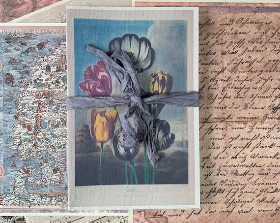 Paperback Writing Journal, Notebook, Tulips, White Pages, Travel Diary, Garden Journal, Fountain Pen Friendly, Handmade, 8.5 x 5.5