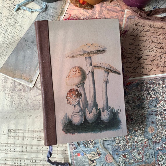 Unique Journal, Vintage Mushroom, Botanical, Sari Silk Trim, Grimoire, Junk Journal, Guest Book, Art Journal, Scrapbook, Book of Shadows