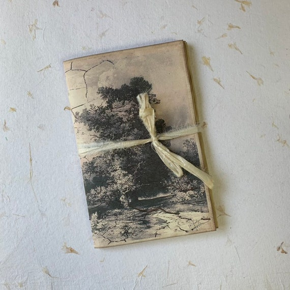 Beige and Black, A5 Insert, Blank, Paperback Writing Journal, Antique Tree, Notebook, Vintage Style Notebook, Travel Journal, Garden Journal